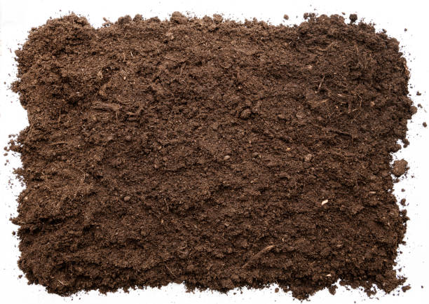 garden soil texture background top view. cut out - earth stock pictures, royalty-free photos & images