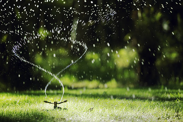 garden sprinkler - watering stock pictures, royalty-free photos & images