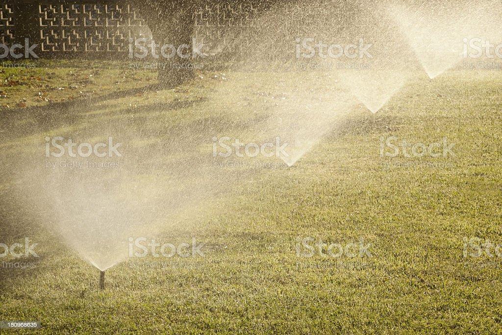 Garden Sprinkler royalty-free stock photo