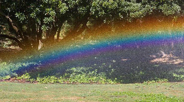 Garden Sprinkler Rainbow stock photo