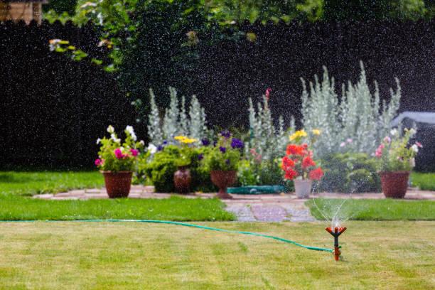 Garden sprinkler watering grass and flowers stock photo