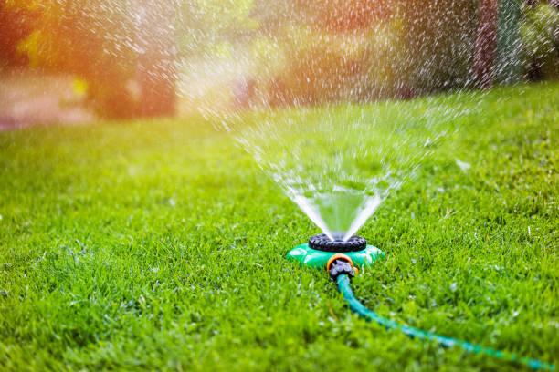 garden sprinkler watering grass at home backyard garden sprinkler watering grass at home backyard hose stock pictures, royalty-free photos & images