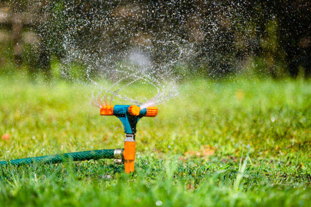 Garden sprinkler watering grass stock photo