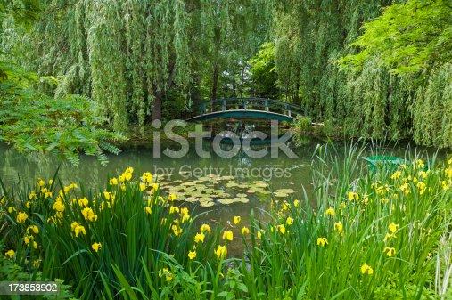 Monet style garden still life