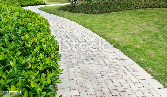 Garden stone path with grass growing up.