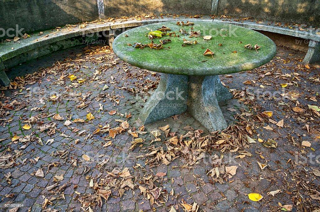 Garden stone table in Autumn Lizenzfreies stock-foto