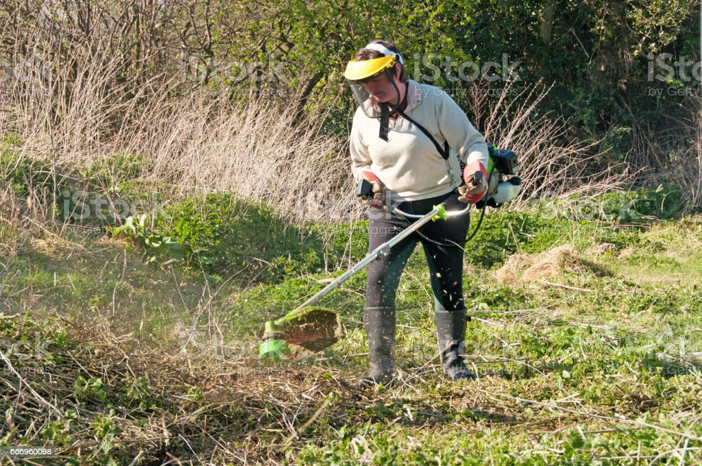 Garden strimmer stock photo