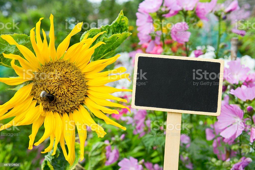 Garden - table - Copy stock photo