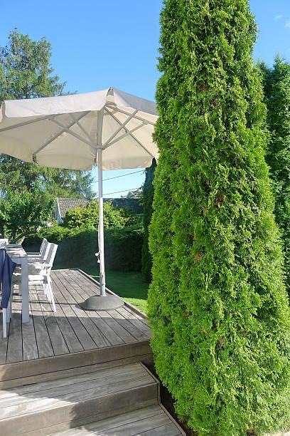 garden terrasse - sonnenschirm terrasse stock-fotos und bilder