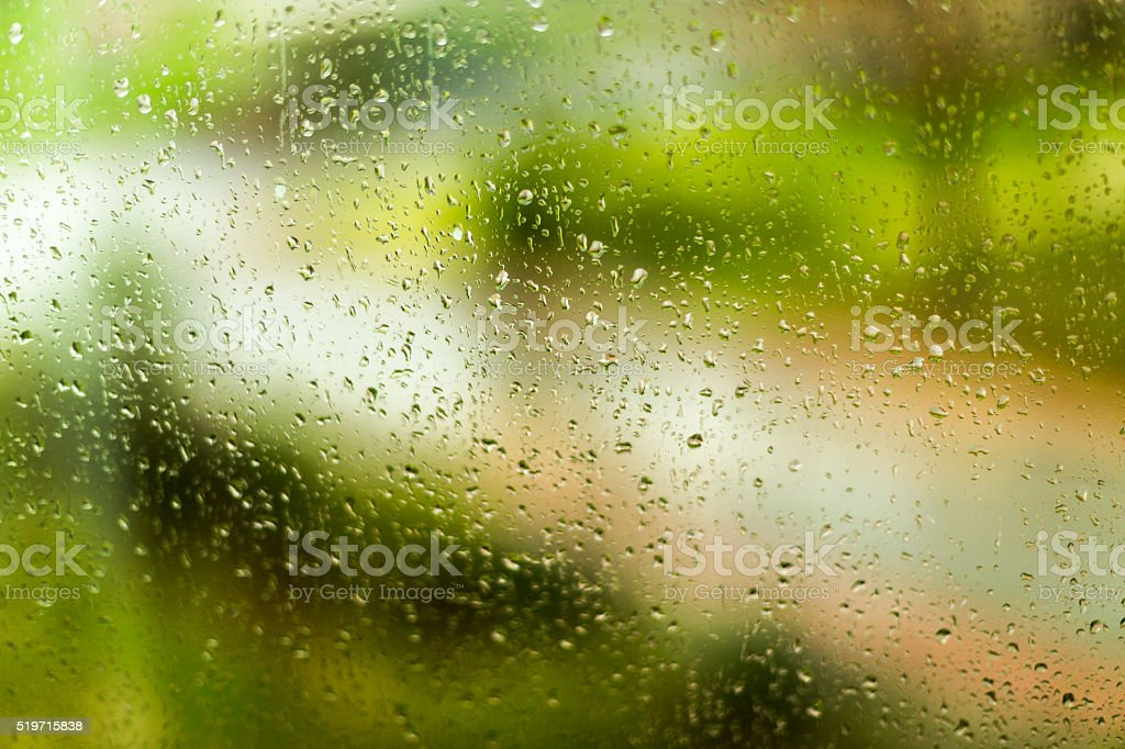 Garden the window in a rainy day stock photo