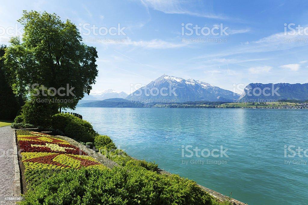 Garden, Thun lake and Swiss mountains royalty-free stock photo