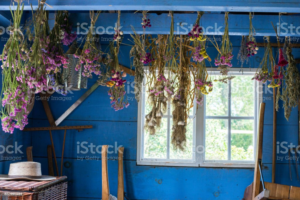 Garden Tool Shed stock photo