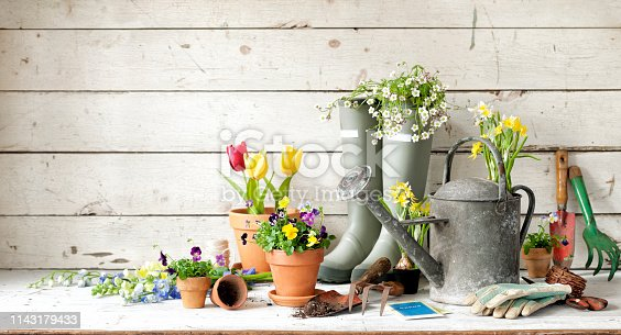 Vintage gardening tools and flowers against a defocused floral and rustic white wood background.