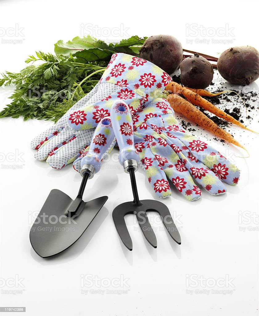 Garden Tools, gloves and vegetables stock photo