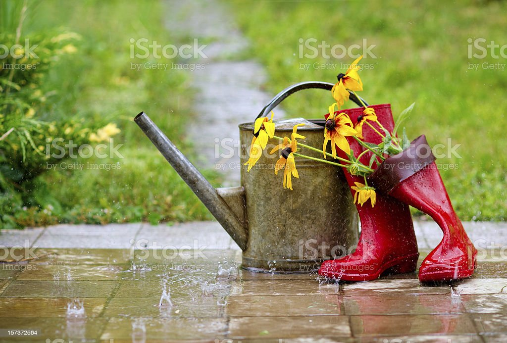 Garden tools under the rain stock photo