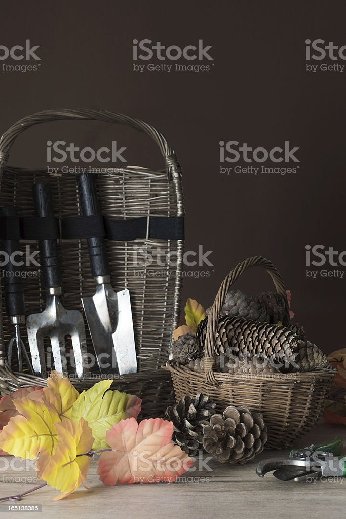 Garden tools  with pine cones and autumn foliage stock photo