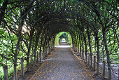 Garden trellis, archway or tunnel in Snug Harbor