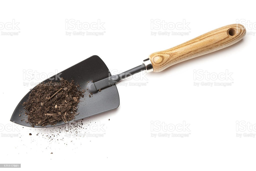 Garden Trowel with Compost stock photo