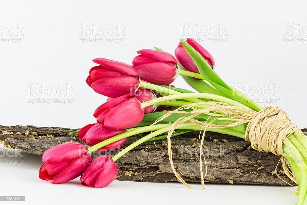 Garden tulips tied with raffia stock photo