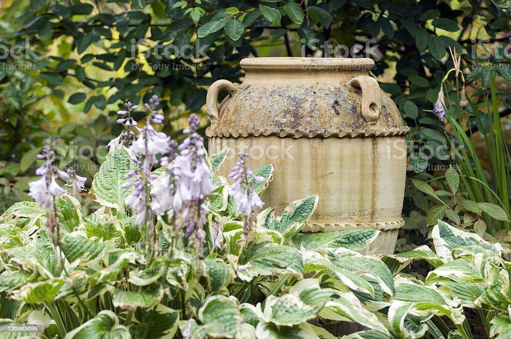 Garden urn and hosta stock photo