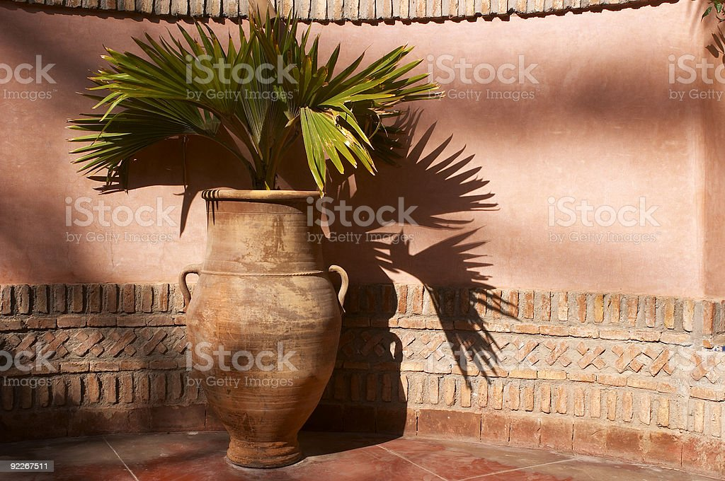Garden urn with palm leaves royalty-free stock photo