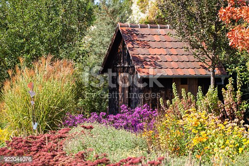 Garden utility shed between flower beds