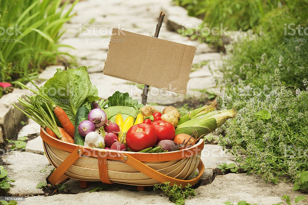 Garden Vegetable Harvest in Basket with Cardboard Sign Hz royalty-free stock photo