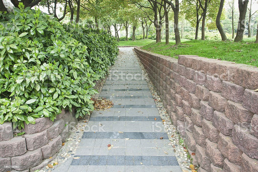 Garden walkway royalty-free stock photo