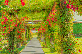Temecula - California, Temecula garden, Temecula wine country