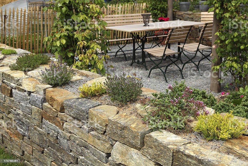 Garden wall with herbs stock photo