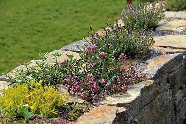 garden wand mit kräutern - steine für gartenmauer stock-fotos und bilder