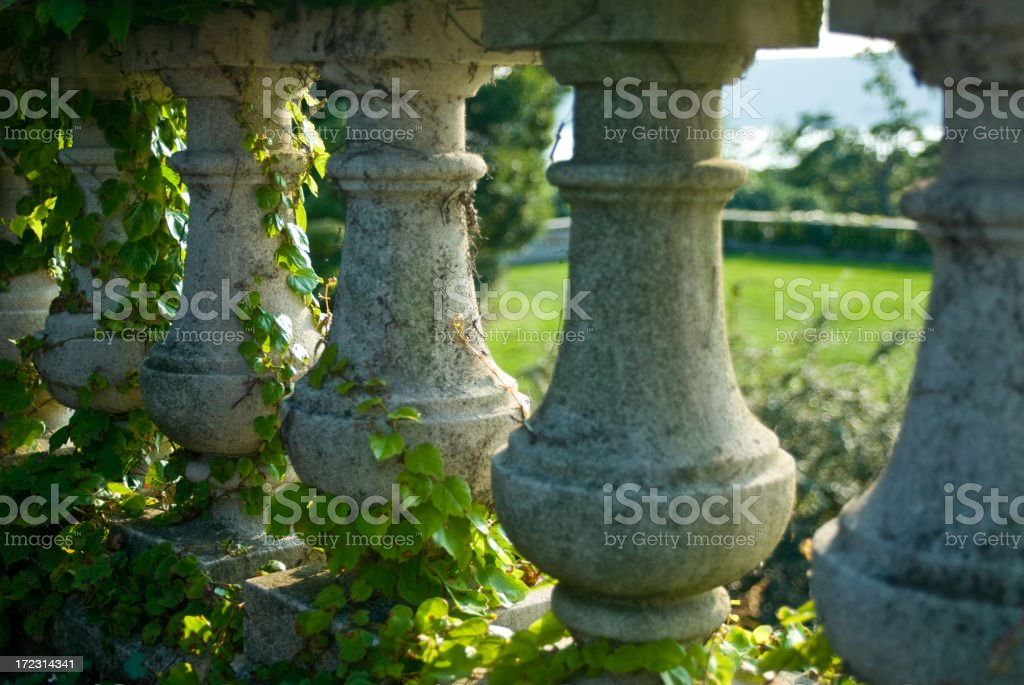 Garden Wall with Ivy royalty-free stock photo