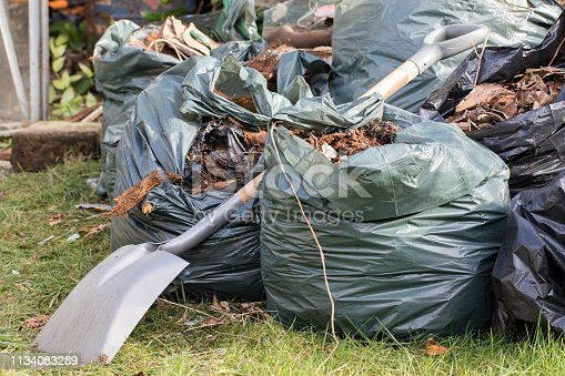 istock Garden waste. Brown leaves and rubbish collected from gardening tidy. 1134083289