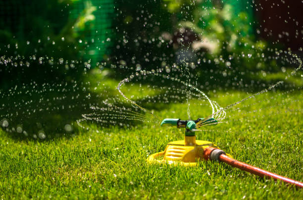 garden watering of a spring green lawn. sunny garden - watering stock pictures, royalty-free photos & images