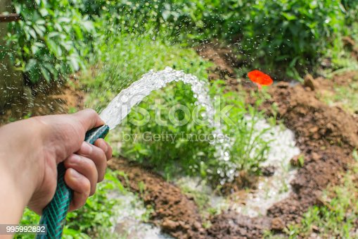 garden care watering plants summer time water jet
