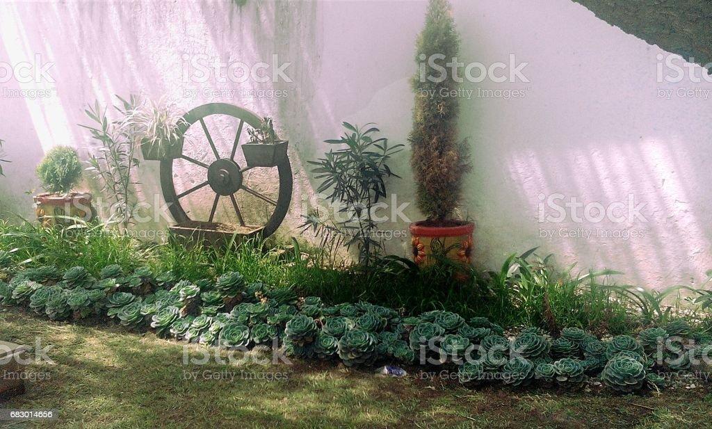 Garden wheel cypress and pots royalty-free stock photo