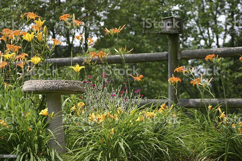 Garden with a birdbath and house stock photo