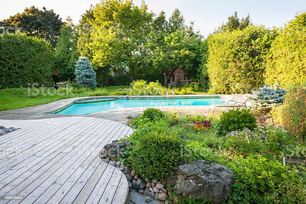 Garden with bushes and swimming pool in backyard stock photo