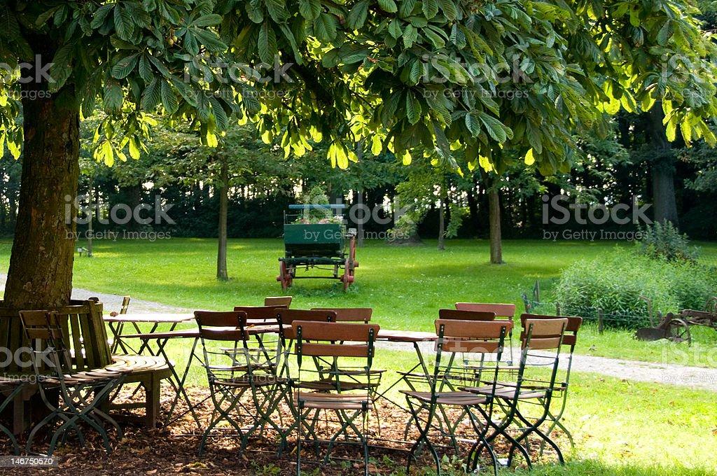 Garden with chestnut tree stock photo