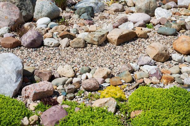 garten mit design aus pflanzen und steinen. - gartenkies stock-fotos und bilder
