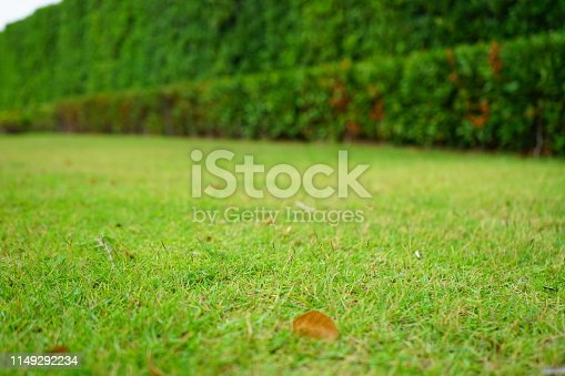 639809128 istock photo Garden with flowerpot stand with asia 1149292234