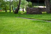 garden with gazebo and lush green lawn