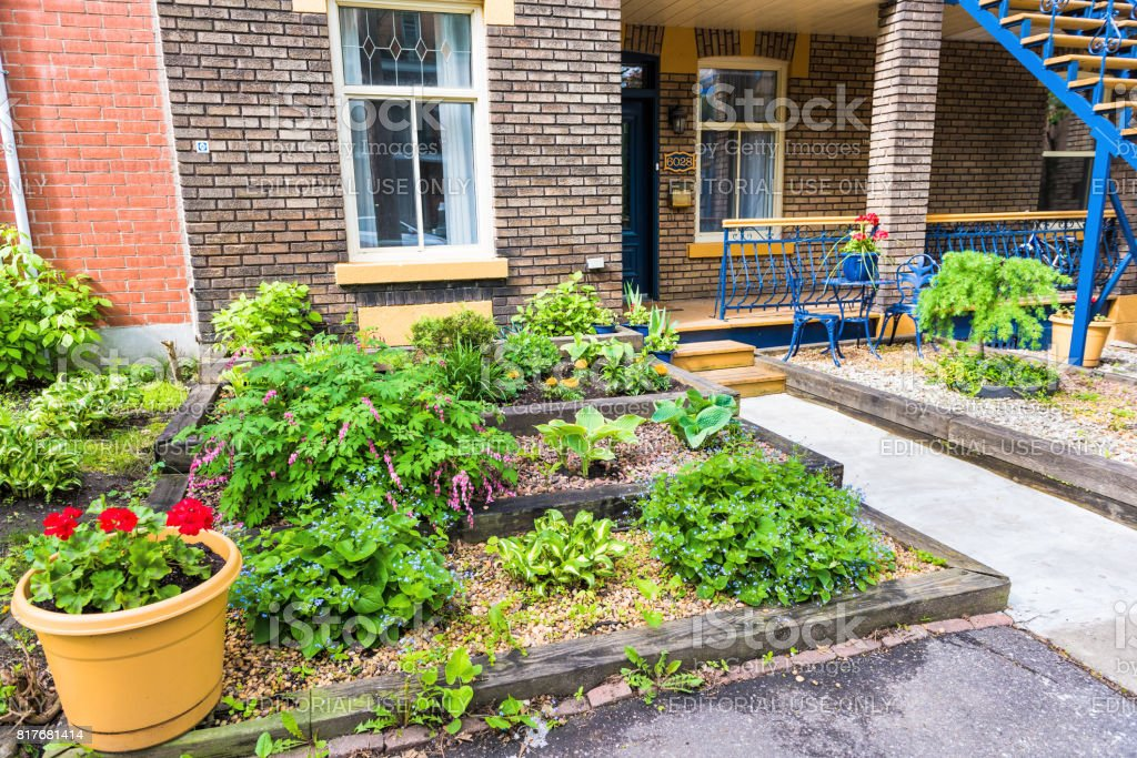 Garden with plants and flowers by apartment stairs in Plateau neighborhood during summer during sunny day in city in Quebec region stock photo