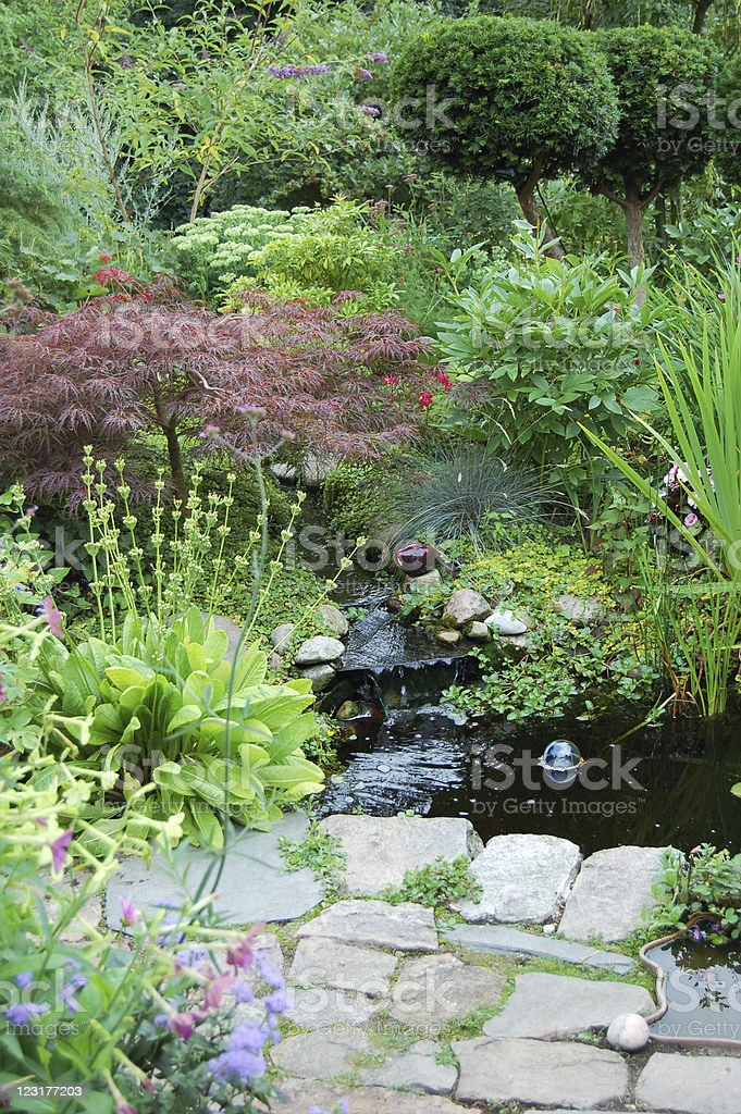 Garden with pond and waterfall royalty-free stock photo
