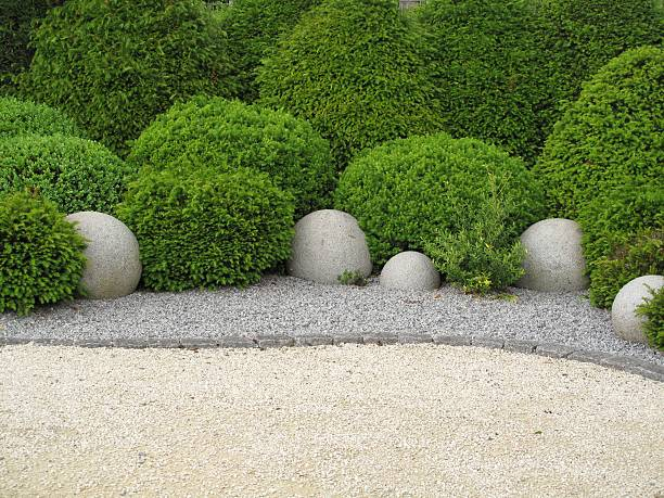 Garden with shrubs on a soil of stone stock photo