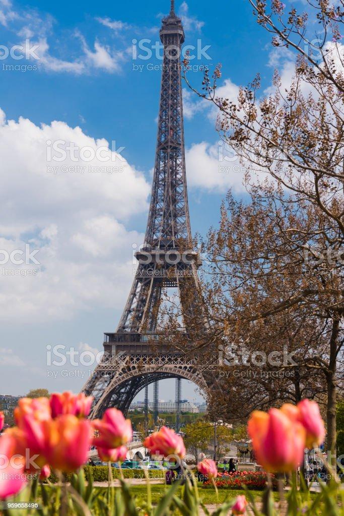 Jardín con tulipanes y flores, la Torre Eiffel de fondo - Foto de stock de Acero libre de derechos