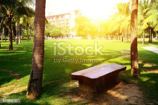 istock Garden,chair and coconut tree 510692521