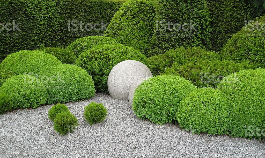 Gardendesign avec buxus et yew - Photo