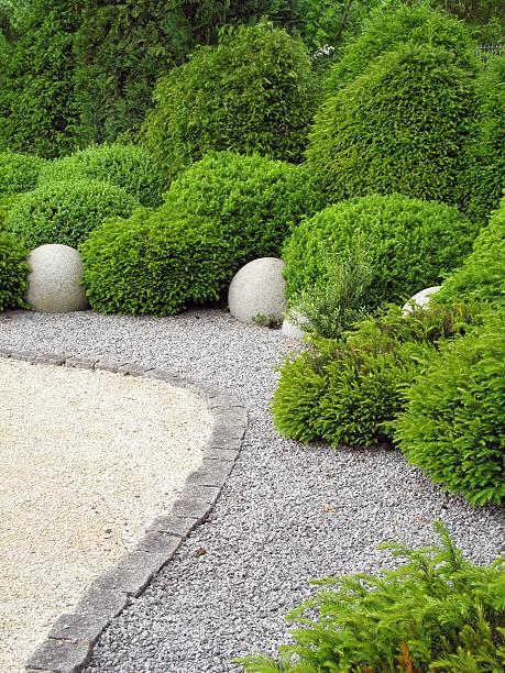 gardendesign mit buxus und yew - gartenkies stock-fotos und bilder
