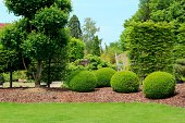 Gardendesign with buxus balls, yew  and stone balls